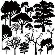 12 x 12 just trees,trees,trees, 300 x 300mm